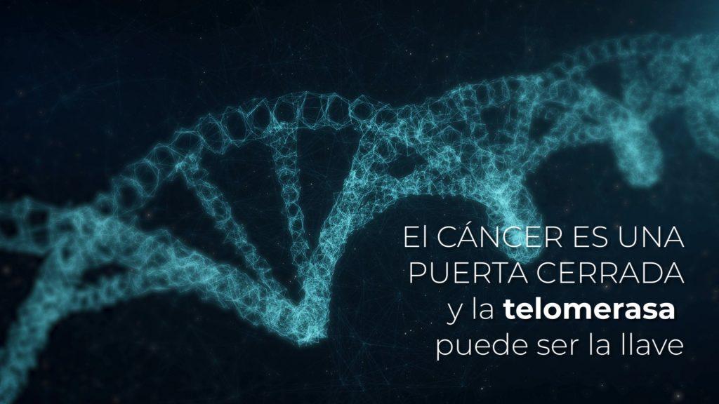 El cáncer es una puerta con cerradura, la telomerasa puede ser la llave